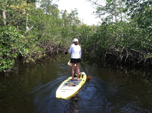 Stand Up Paddle Board in the canals - it's the Venice of America